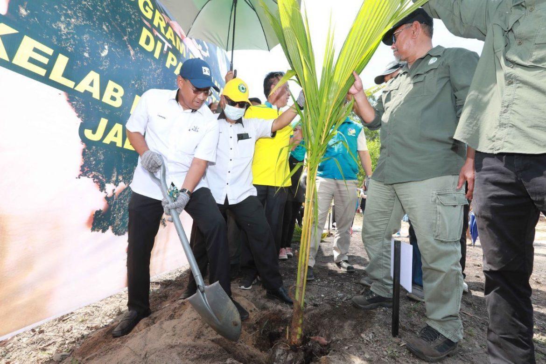 JPNP sasar tanam 1.2 juta pokok tahun ini