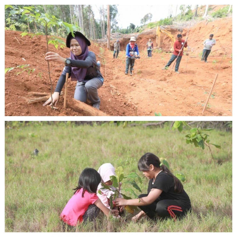 Dua juta pokok balak ditanam di seluruh Pahang tahun ini