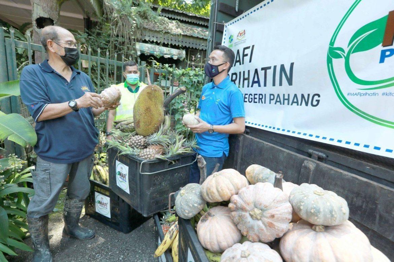 FAMA Pahang sumbang 6.24 tan buah untuk binatang dalam kurungan