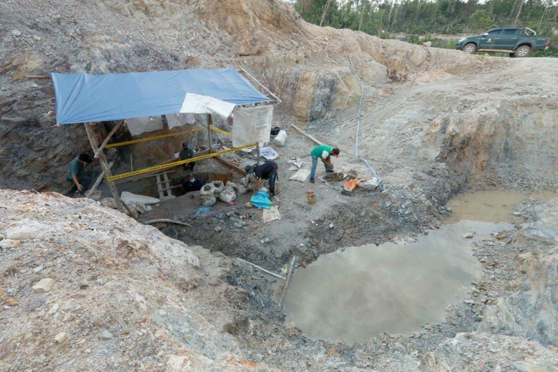 Pahang akan terus buru 'lanun alam sekitar