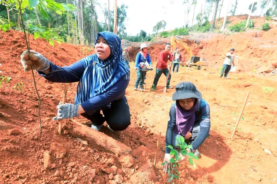 JPNP akan terus tanam pokok di Tasik Chini